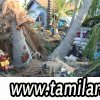 Situation_Report_1st_May_2009_TamilNational_004